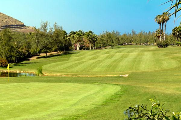 golf amateur de tenerife: