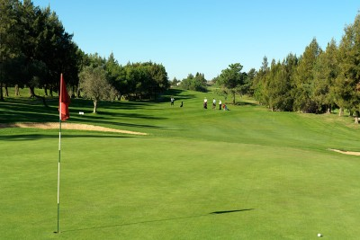 Pestana Golf Clubs